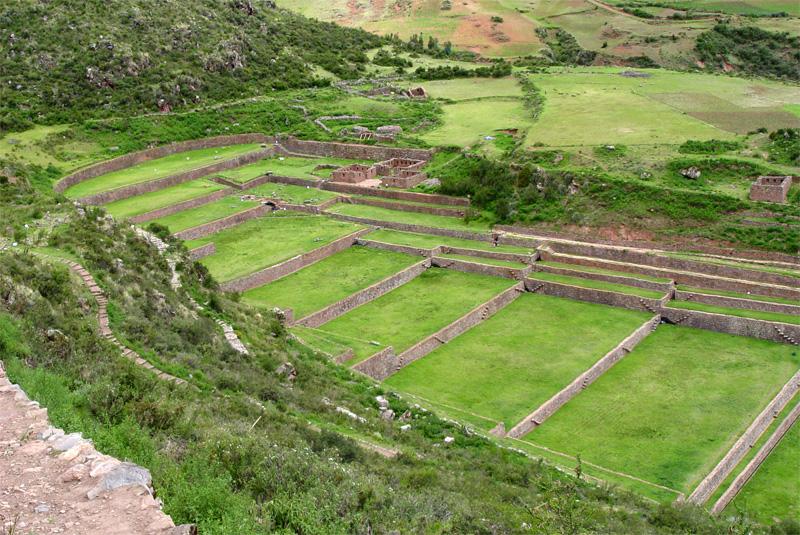 Tipon Cusco